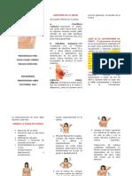 folleto autoexamen de seno