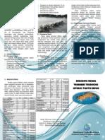 Leaflet Budidaya Udang Vannamei Teknologi Intensif