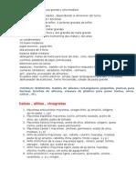 Listado de Instrumentos y Futuras Recetas (Demo)