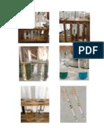 Protein Dan Gula Urin