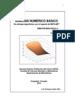 ANALISIS_NUMERICO_BASICO (1).pdf