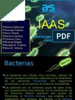 Bacterias Presentacion de Iaas
