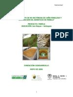 Sostenimiento de 90 Hectareas de Cana Panelera y Adecuacion Del Beneficio de Panela
