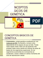 Conceptos Básicos de Genética