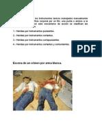 Homicidio Arma Blanca (Luis)