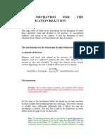 The Mechanism for the Esterification Reaction