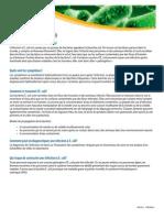 E-coli_F.pdf