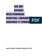 Formas de Contenido Multimedia Digital