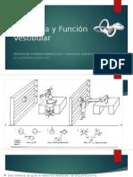 Anatomia y Función Vestibular