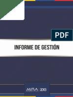 Informe de Gestión - MIRA 2013