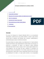 Evaluacion Del Impacto Ambiental Residuos Solidos