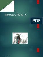 Nervus IX & X