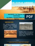 SUELOS DE ZONAS ARIDAS.pptx