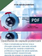 Perle Elschnig - Dr. Kervin Poonoosamy Padiachy .pdf