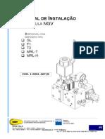 NGV-MI-05-10991467PT-11405P.pdf