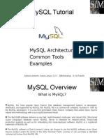 MySQL Basic