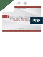 PPI_DESEMPENO_EMS.pdf