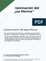 Contaminación Del Agua Marina''