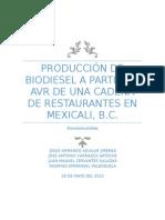 Produccion de Biocombustibles a Partir de AVR