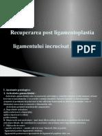 Ligamentoplastia LIA