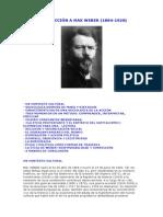 Introducción a Max Weber