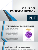 Virus Del Papiloma Humano Diapos