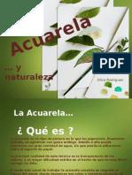Acuarela 141015155202 Conversion Gate02