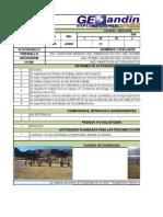 Reporte Ssoma Geosac 09-06-15