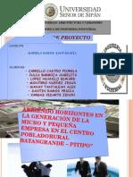 Proyecto Abriendo Horizontes en La Generacion de La Micro y Mediana Empresa
