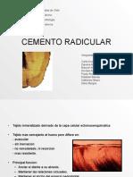 Cementoradicular 090404221812 Phpapp02 (1)