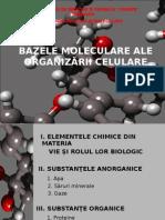 bazele moleculare
