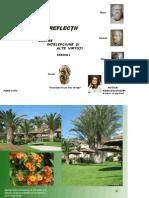 Reflectii despre intelepciune.pdf