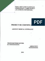 Ex . Lucrare Licenta AMG III