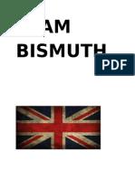 Team Bismuth