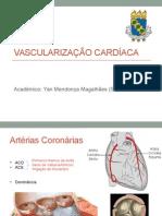 Capacitação Vascularização