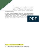 Informe Pozo Chincol YPF