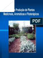 Modelo - Rede de Produção de Plantas Medicinais, Aromáticas e Fitoterápicos (1)