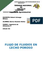 flujo de fluido en lecho poroso