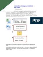Aplicar Formato Campos Al Combinar Correspondencia