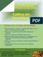 Cultivo Hortalizas 2015-I