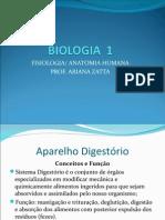 Fisiologia Anatomia Humana - Sistema Digestório Parte 01 PDF