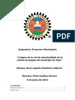 Proyectos Municipales Rosa Angelica