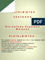 CLASE 48 CESTODOS Y CISTICERCOSIS.ppt