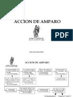 1_Amparo