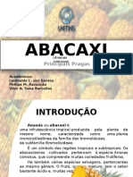 Abacaxi (1)