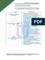 las organizaciones.doc