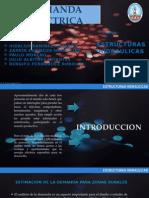 presentacion demanda electrica.pptx
