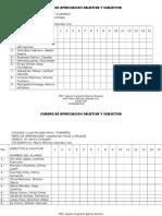 Cuadro de Apreciacion Objetiva y Subjetiva Liceo Champel