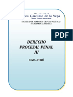 Derecho Procesal Penal III