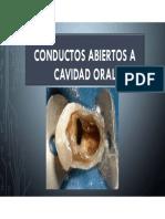 Conductos Abiertos a Cavidad Oral Segunda